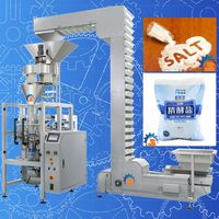 500g Salt Packaging Machine