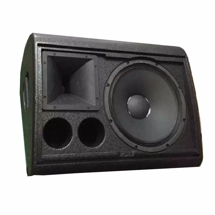 LE1500S 15 pollice Stage Monitor Speaker Box