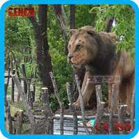 Zoo decoration resin statue life size lion model