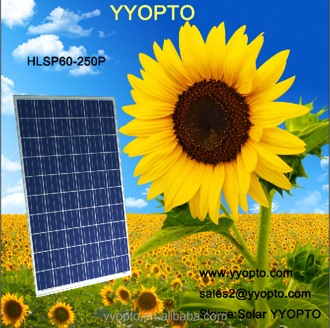 250W Polysilicon Solar Panel Price