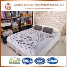 High Quality Softtextile 2 Ply Korean Mink Blanket Export From China