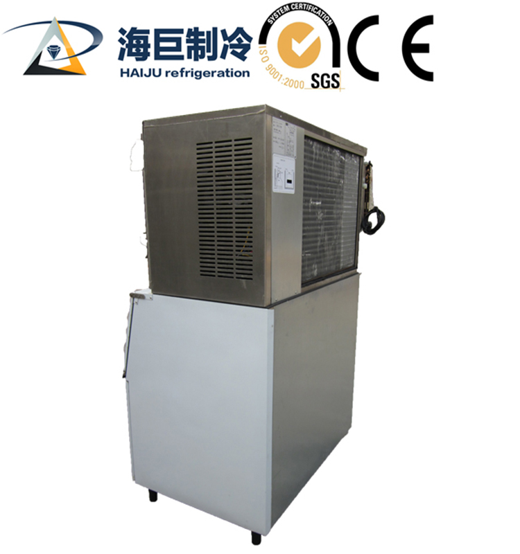 10 Ton flake ice machine