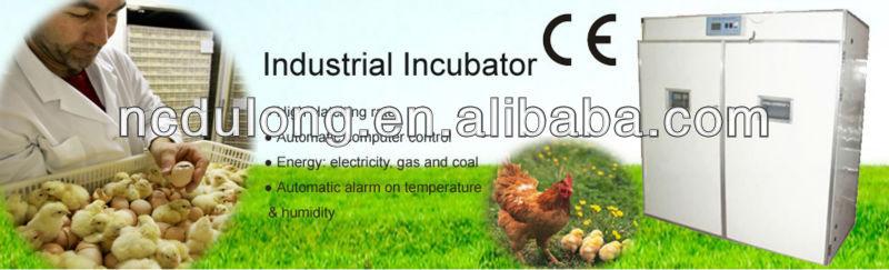 Wholesale price 1584 chicken egg incubator hatching machine