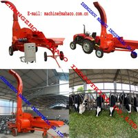 Corn stalk hay cutter machine for cattle food