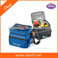 portable 12can cooler bag
