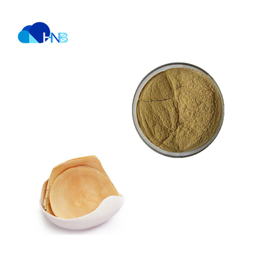 Best Quality Manufacturer Supply Tongkat Ali extract powder Price