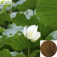 blue lotus extract /the raw of diet pills lose weight fast