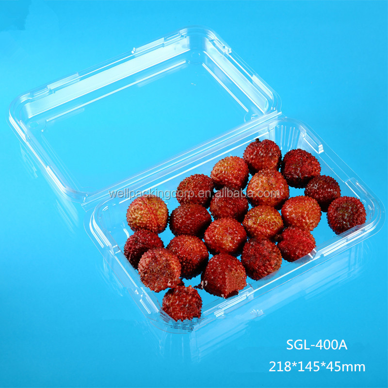 Brand New Design Beautiful plastic tray for fruit packaging