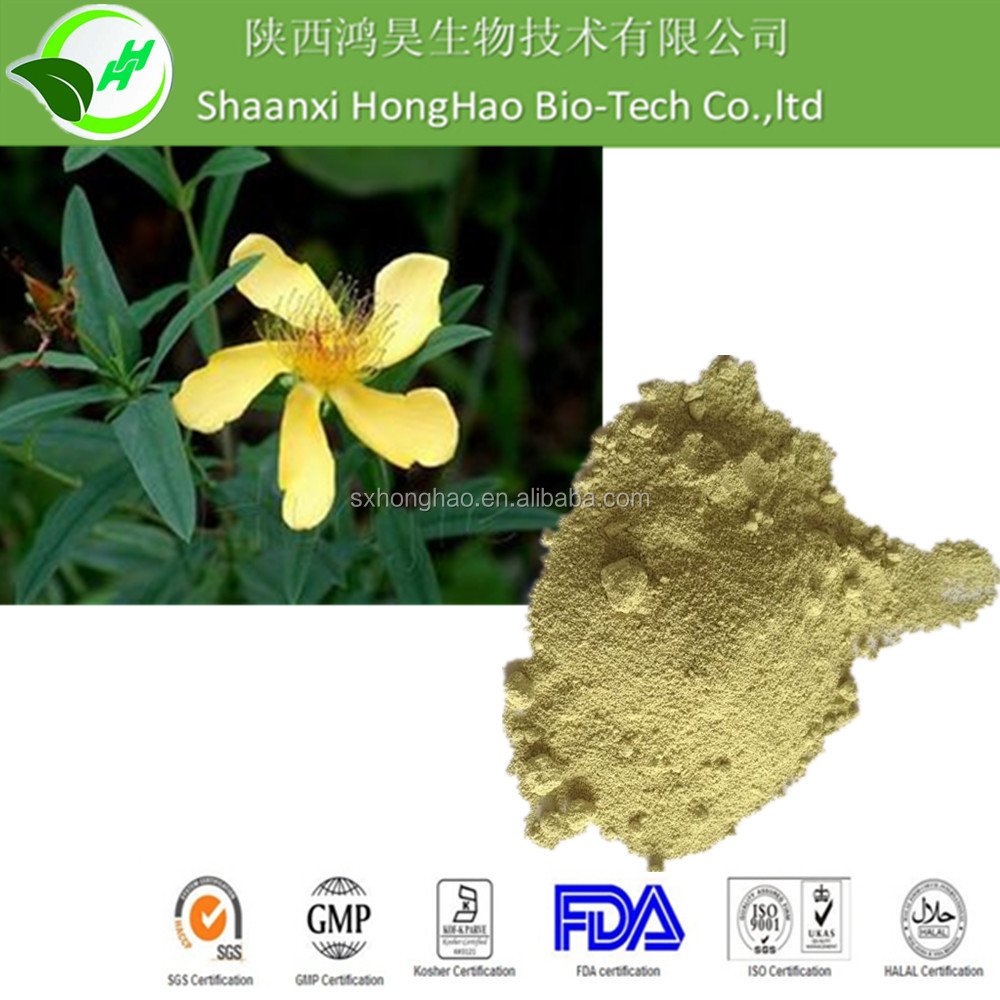 Sophora Japonica Extract Rutin 95%/Sophora Japonica Extract quercetin dihydrate 98% powder from GMP factory