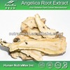 1kg Plant Herbal Angelica Sinensis Extract (Latin name: Radix Angelicae Sinensis)