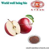 Latin name of green apple fruits Malus domestica extract powder