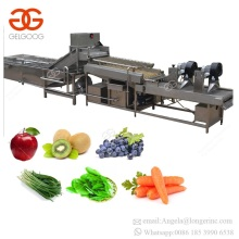 Stainless Steel Electric Vegetables Salad Washing Equipment Palm Dates Cleaner Carrot Apple Potato Onion Garlic Cleaning Machine