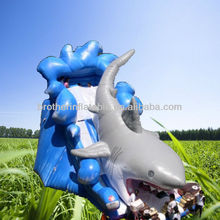 Residential Inflatable Wholesale Water Slides