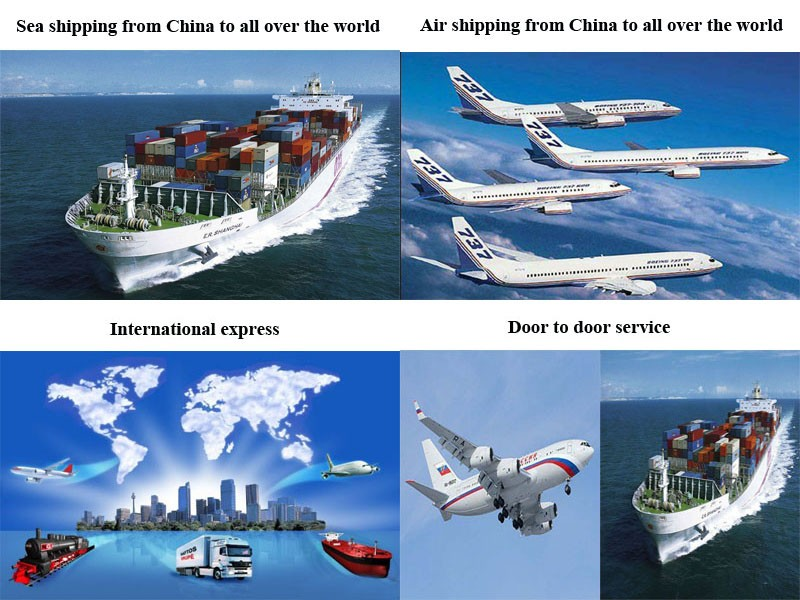 Cheap Fast and Safety Ocean shipping Service to Uruguay