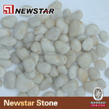 Polished white pebble for garden cheap