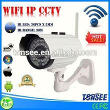 WIFI IP CCTV, Plug and Play Pan tilt network IP camera ,ds-2cd2132f-is