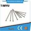High quality EG Common nail/ Common wire nail/Common iron nails