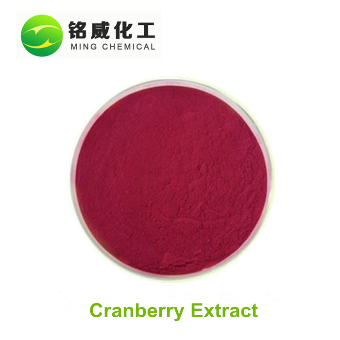 Antioxidant 50% proanthocyanidins 100% natrural cranberry extract supplier with free sample