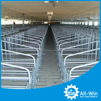 pig equipment sow limitation stall for livestock
