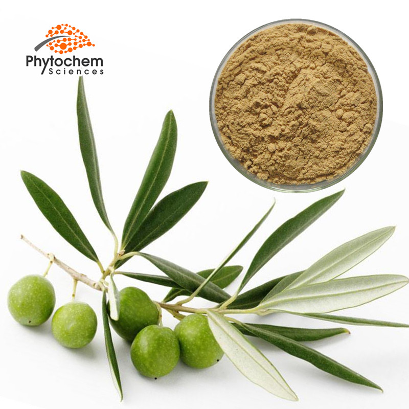 bulk olea europaea fruit oil powder capsules oleuropein olive leaf extract