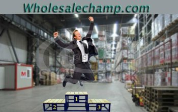 Great wholesale business web domain name for sale www.wholesalechamp.com