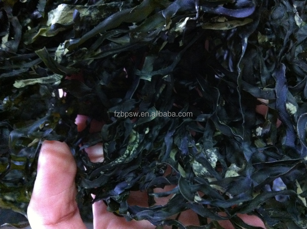 2018 new Shredded Kelp,Laminaria by machine,food grade,supplier in Fujian China