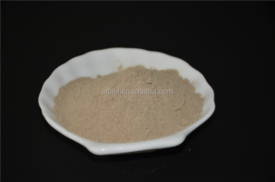 Autolyzed Yeast Powder brewer yeast,yeast manufacturers/red yeast rice extract/dried brewer yeast