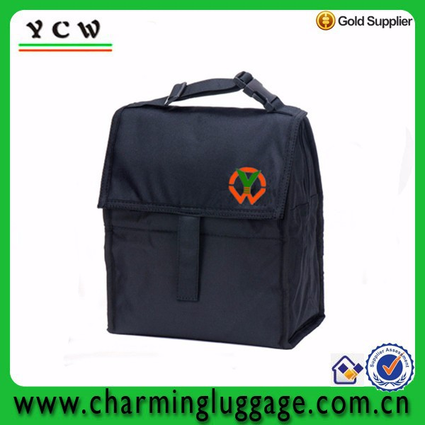 Folding disposable insulated cooler bag for freezer food