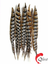 Wholesale 10-12 inches natural reeves venery pheasant tail feather