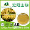 /product-detail/free-sample-water-solubility-banana-powder-green-banana-flour-60334287493.html