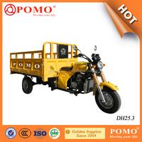 2016 Popular Heavy Load Big Power Strong 250cc Motorized Cargo Gas Powered Adult Tricycle