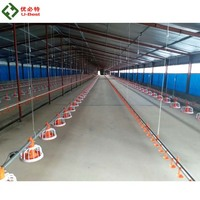 Tunnel Ventilated Poultry Building Automatic Broiler Chicken Farm Equipment