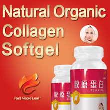 Natural Bone Collagen Capsules, Tablets, Softgels, pills, supplement - Manufacturer, Price, OEM, Private Label