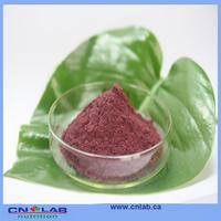 In bulk supply the best grape seed extract good supplier from China
