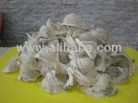 Raw Bird Nest - Grade A