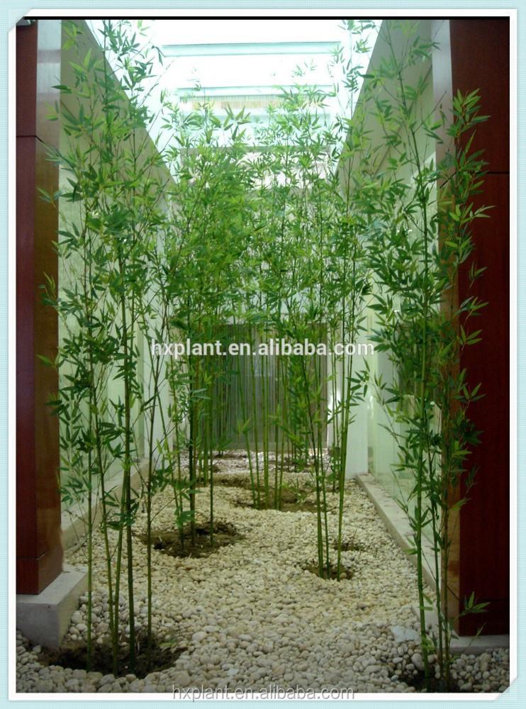grossiste lucky bambou en pot acheter les meilleurs lucky bambou en pot lots de la chine lucky. Black Bedroom Furniture Sets. Home Design Ideas