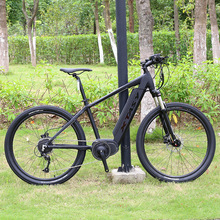 350/500W removable hidden battery mountain electric bicycle/e bike