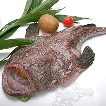 New Coming WR frozen monkfish For Sale