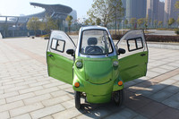 Special style Electric Utility Vehicle/car made in China