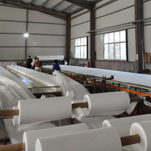 PP Material White Nonwoven Fabric Roll for Agriculture and Medicine