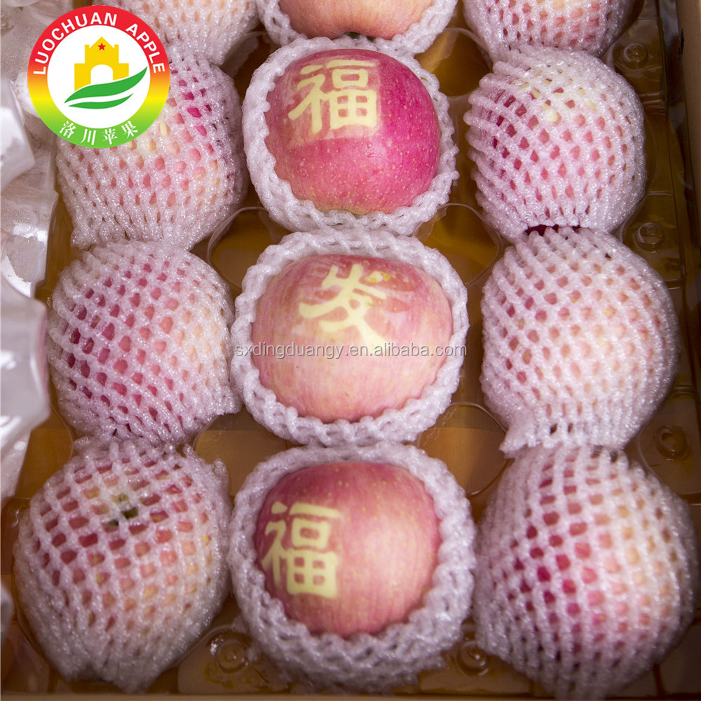 Fresh Quince Pome Fruit Chinese Blush Fuji <strong>Apple</strong> Type Packaged By Foam Net