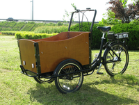 2015 hot sale adult three wheel electric cargo bicycle