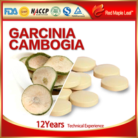 Garcinia Cambogia Extract Slimming Patch Capsules,Tablets,Softgels,pills,supplement - Manufacturer,Price,OEM,Private Label