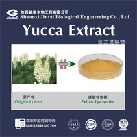 Pure Natural 10% 30% Saponins Yucca Extract Powder