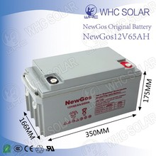 WHC AGM Sealed 12V 65ah Lead-Acid Battery with Low Defect Rate