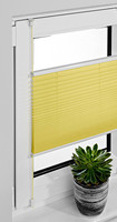 Elegent window cover pleated Blind