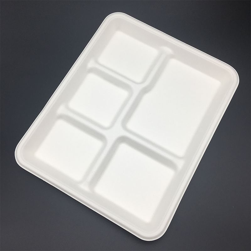 compostable bagasse trays.JPG
