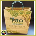 Brown Paper Bag with paper handle and logo printed