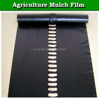 pe high quality plastic biodegradable agricultural mulch film