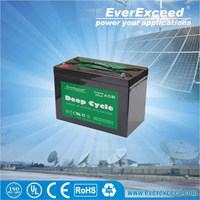 EverExceed deep cycle dry battery 12v 150ah with price